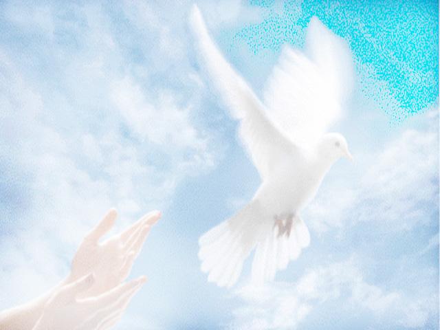 Fondo de pantalla cristianos 2 for Bajar fondos de pantalla religiosos gratis